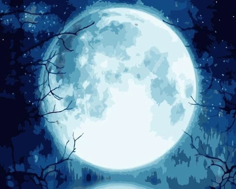 Night Sky Moon Diy Paint By Numbers Kits FD238