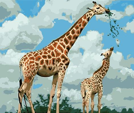Giraffe Diy Paint By Numbers Kits UK AN0481