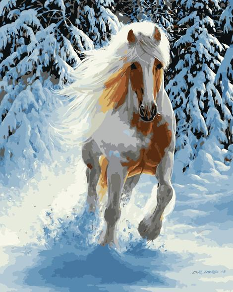 Horse Diy Paint By Numbers Kits UK AN0265