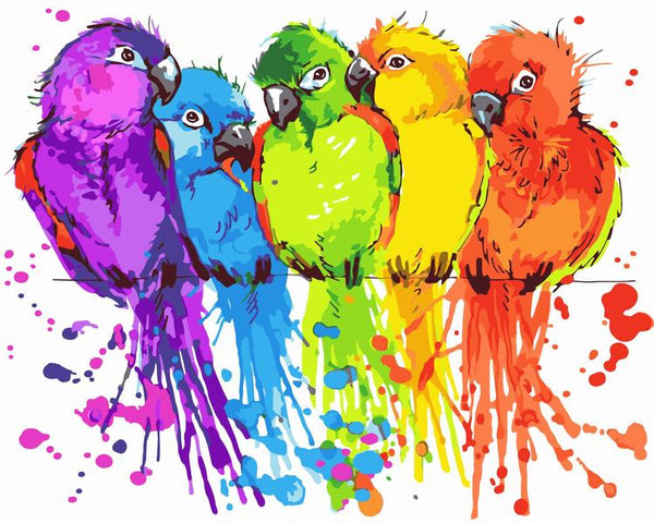 Parrot Diy Paint By Numbers Kits Uk WM-236