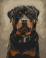 Pet Black Dog Diy Paint By Numbers Kits UK PE0041
