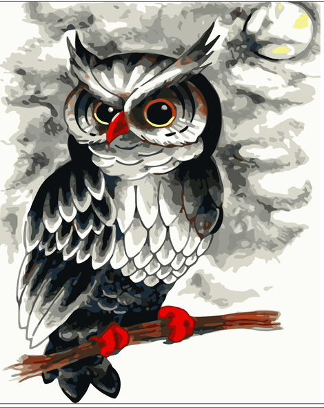 Owl Diy Paint By Numbers Kits UK FA0065