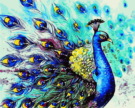 Peacock Diy Paint By Numbers Kits UK AN0665