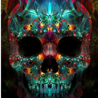 Skull Diy Paint By Numbers Kits UK PP0039