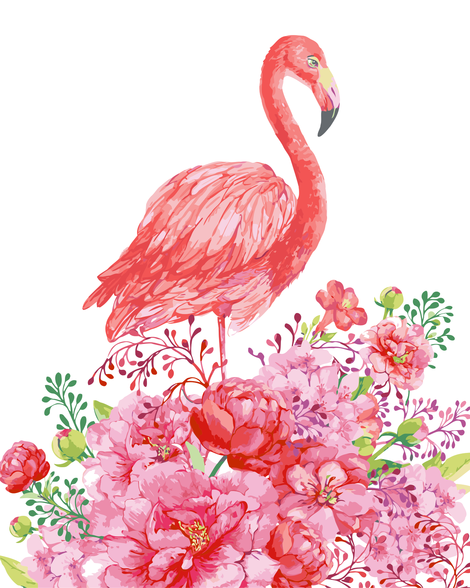 Flamingo Diy Paint By Numbers Kits UK AN0183
