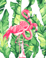 Flamingo Diy Paint By Numbers Kits UK AN0173