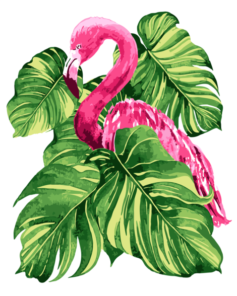 Flamingo Diy Paint By Numbers Kits UK AN0182