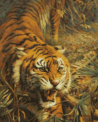Animal Tiger Diy Paint By Numbers Kits UK AN0364