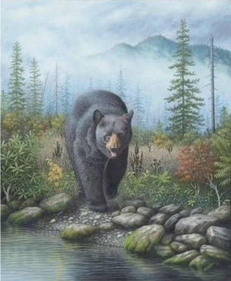 Bear Diy Paint By Numbers Kits UK AN0515