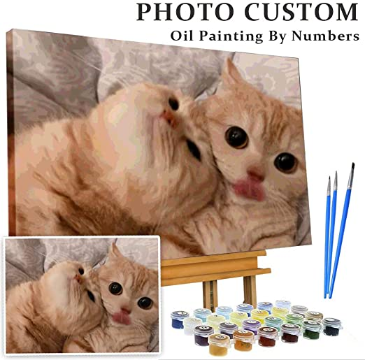 Diy Custom Photo Paint By Numbers For Cat, CDP0004