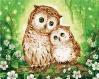 Owl Paint By Numbers Kits Uk VM90932