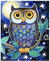 Owl Diy Paint By Numbers Kits UK FA0034