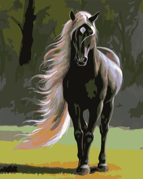 Horse Diy Paint By Numbers Kits UK AN0268