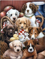 Dog Diy Paint By Numbers Kits UK PE0038