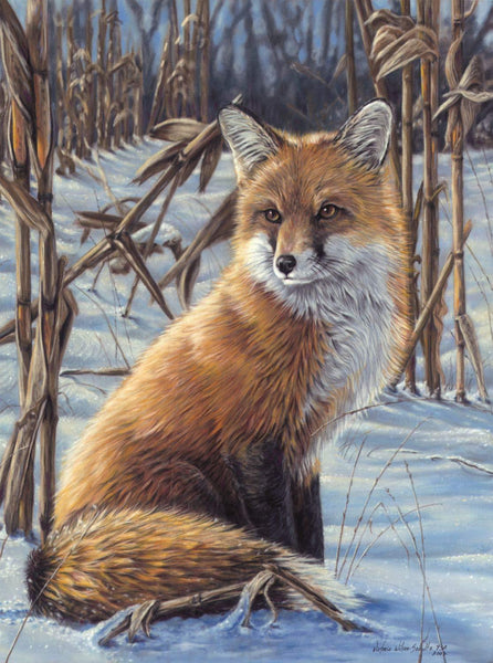 Animal Little Fox Diy Paint By Numbers Kits UK AN0139
