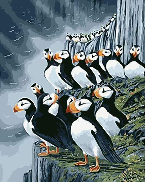 Penguin Diy Paint by Numbers Kits UK AN0214
