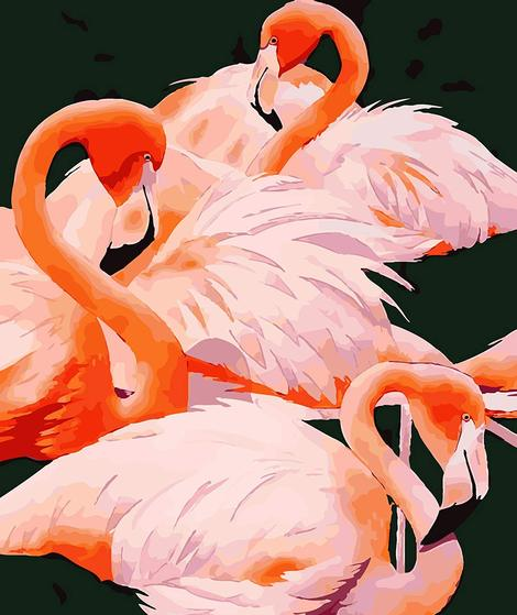 Flamingo Diy Paint By Numbers Kits UK AN0189