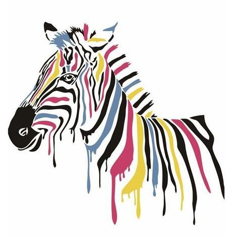 Zebra Diy Paint By Numbers Kits UK AN0791