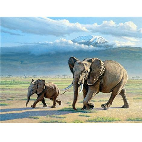 Elephant Diy Paint By Numbers Kits UK AN0207