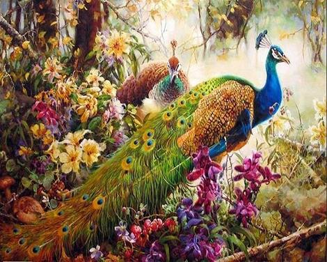 Animal Peacocks In The Forest Diy Paint By Numbers Kits UK AN0663