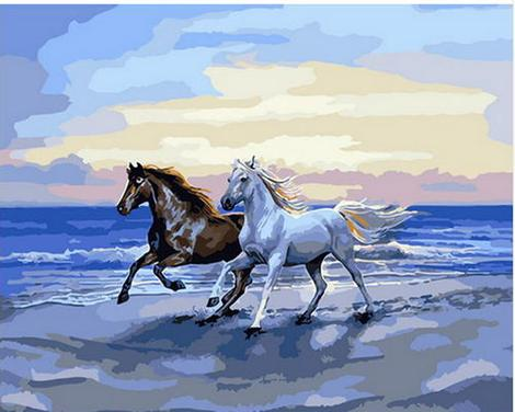 Horse Diy Paint By Numbers Kits UK AN0269