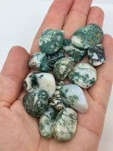 Load image into Gallery viewer, Tree Agate 3 Tumbled Stones Crystals Gemstones