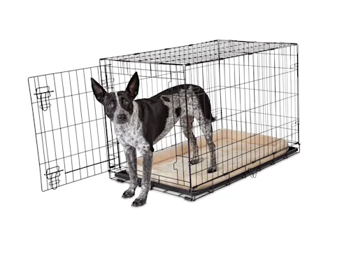 Animaze 1-Door Folding Dog Crate