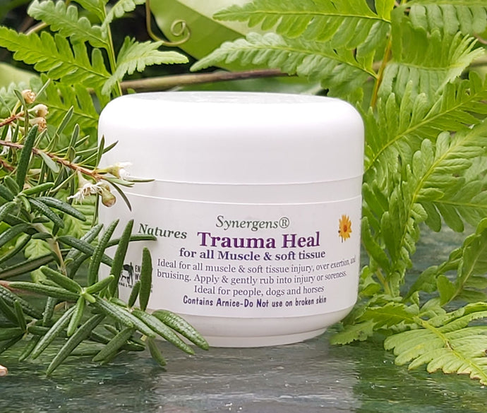 Trauma Heal cream 50gm
