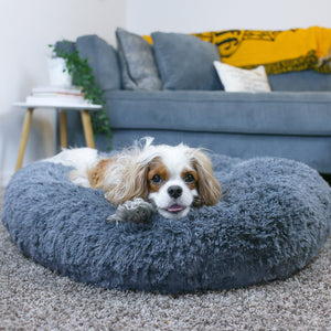 Australia's Favourite Calming Dog Bed - 40% OFF Sale!