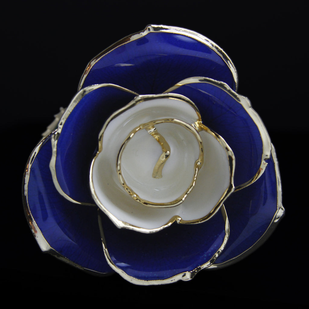 Genuine University of Kentucky Blue and White Rose Preserved Lacquer Dipped 24K Gold Long Stemmed in Gift Box - The Castle Jewelry  - 1