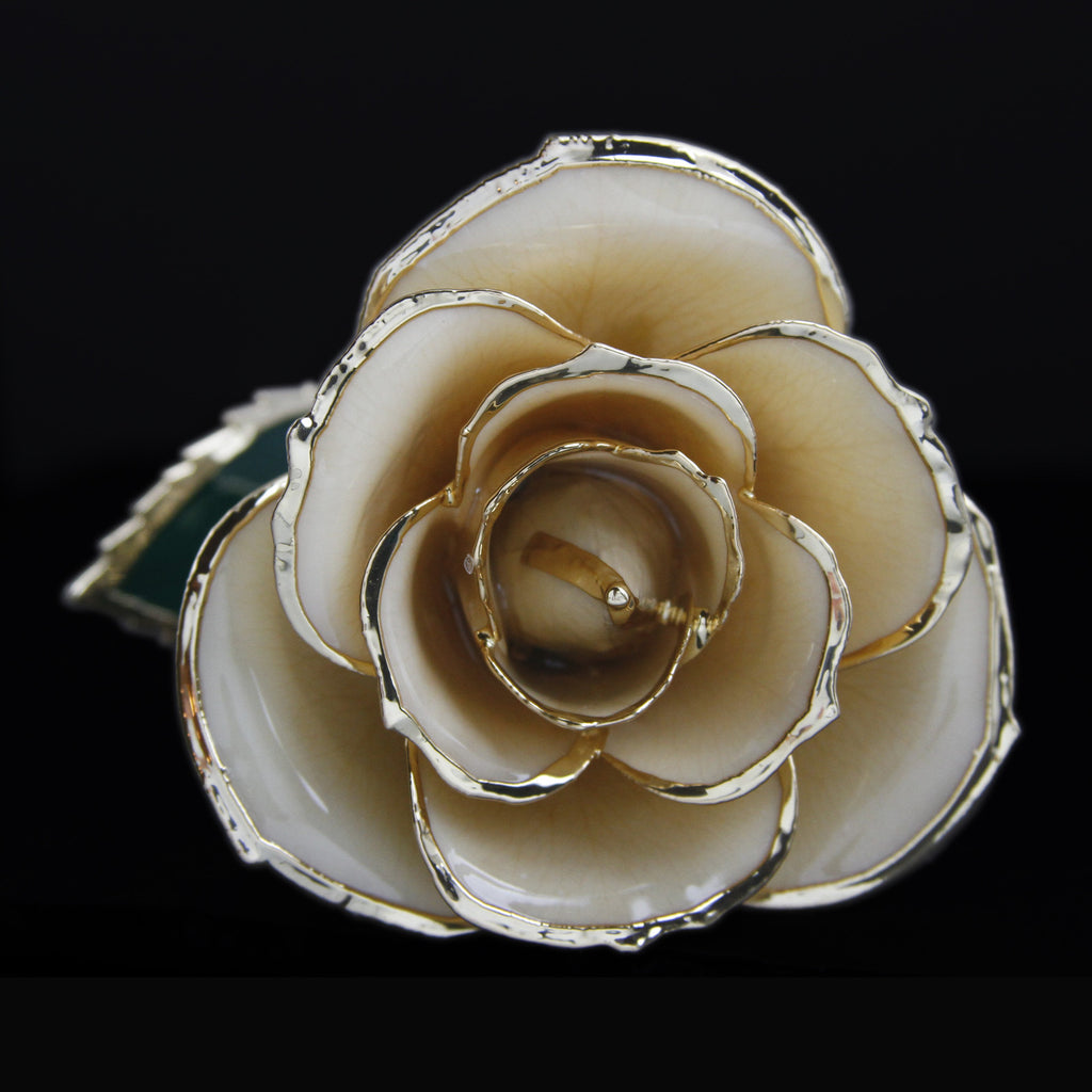 Genuine White Rose Preserved Lacquer Dipped 24K Gold Long Stemmed in Gift Box - The Castle Jewelry  - 1