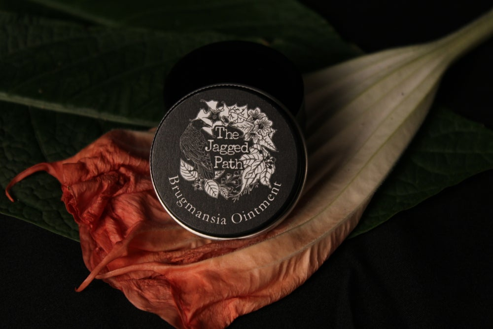 Brugmansia Flying ointment
