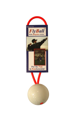 [D] FlyBall (Baseball Trainer)