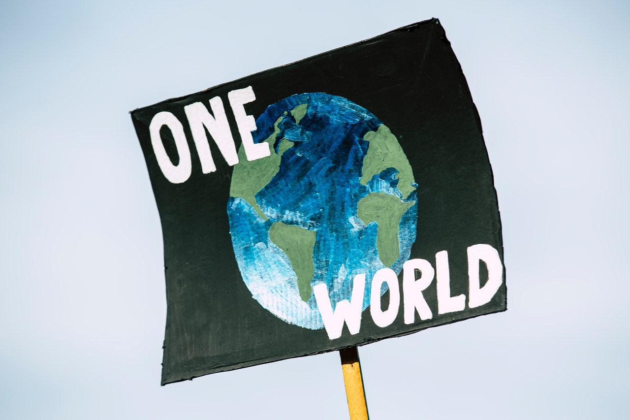 One World protest sign