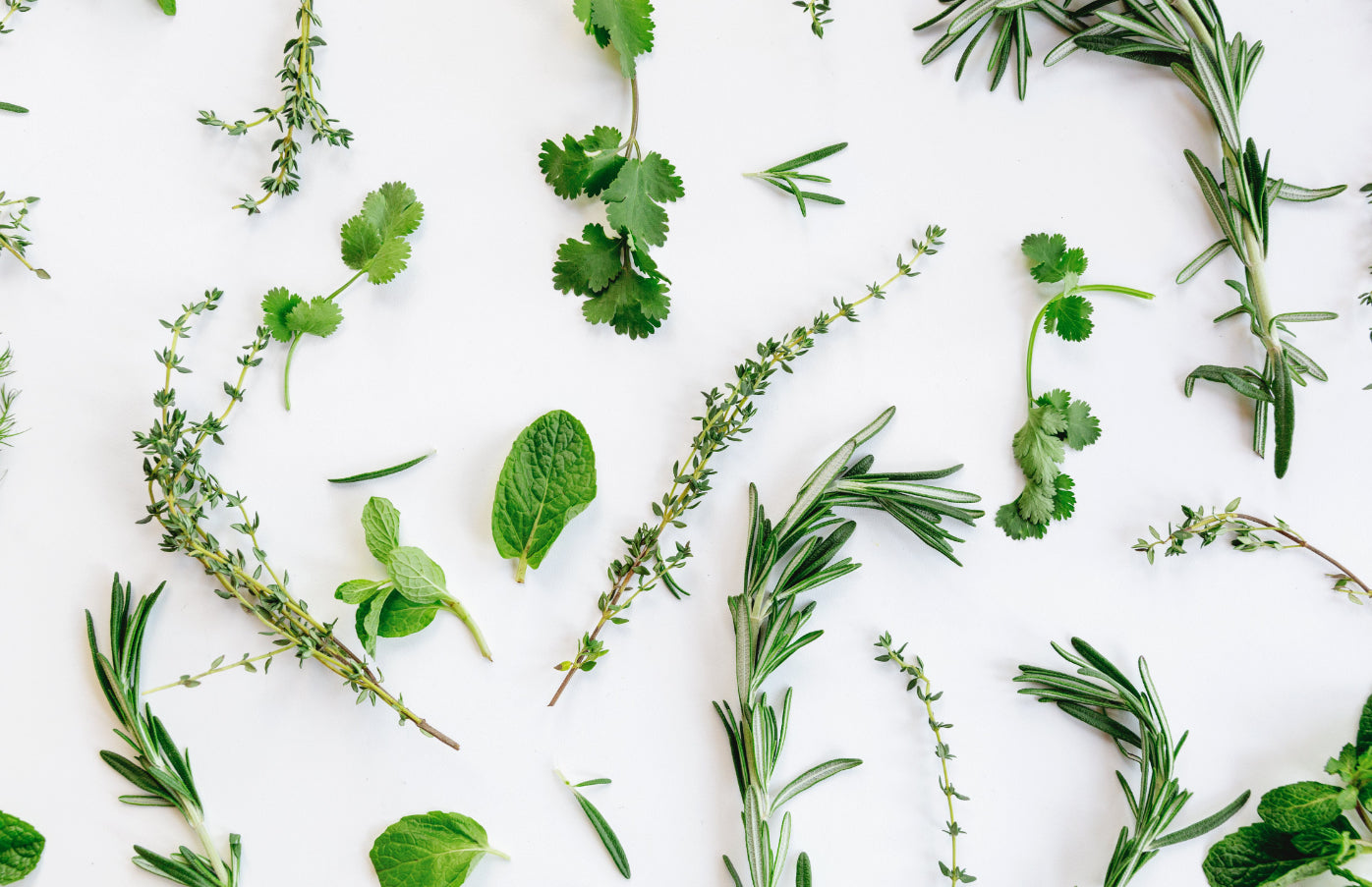 Green tea parsley positive effects