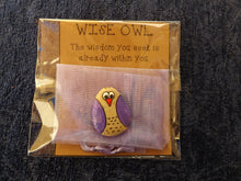 Load image into Gallery viewer, Wise Owl Pocket Pebble MTO