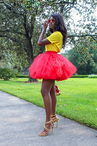 Mini Tulle Skirt