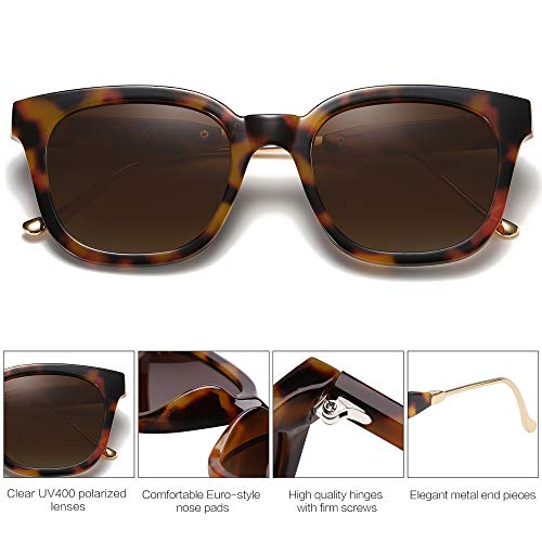 EPIC X BELLA Classic Square Polarized Sunglasses Unisex UV400 Mirrored Glasses SJ2050 with Tortoise Frame/Gradient Brown Lens