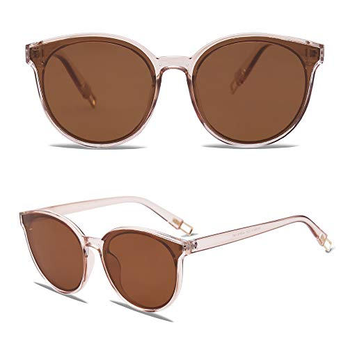 EPIC X ANNA Fashion Round Sunglasses for Women Men Oversized Vintage Shades SJ2057 with Clear Frame/Brown Lens