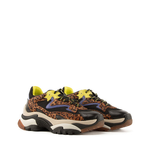 RINEO ASH addict leopard yellow 02