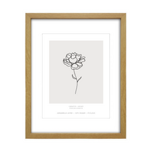 Load image into Gallery viewer, January Birth Flower Print - Carnation