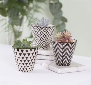 Sass & Bell - Mini Geometric Planters (Set of 3)