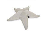 Pool Float Starfish Pool Float Available in 5 Colours Sand Ogo - Play Offside
