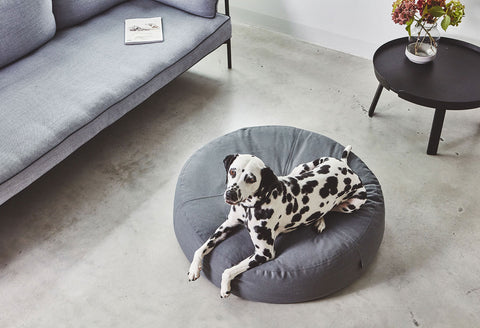 Dog Pouf Functional & Clever Design Dog Pouffe MiaCara - Play Offside