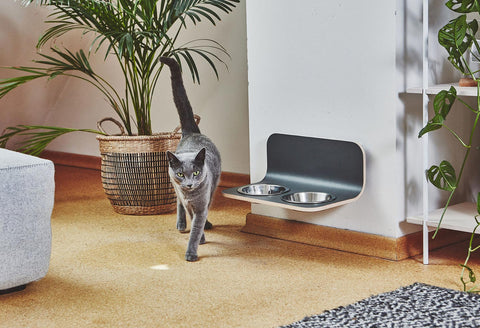Cat feeder Minimalistic Wall mounted Cat Feeder MiaCara - Play Offside