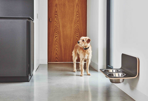 Dog Feeder Minimalistic Luxury Wall Mounted Dog Feeder MiaCara - Play Offside
