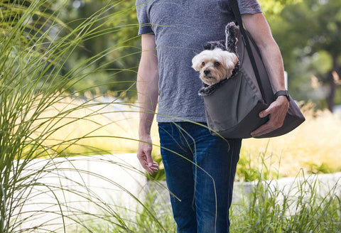 Dog Carrier Luxury Dog Carrier Via Available in 2 sizes & 3 colours MiaCara - Play Offside