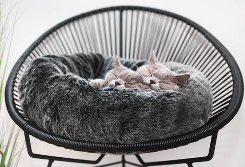 Cat Bed Silky Smooth Faux Fur Cat Bed Felpa MiaCara - Play Offside