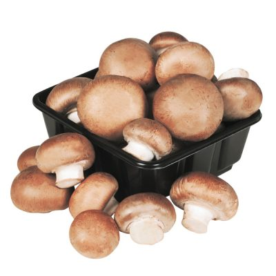Coffee Cello Mushrooms