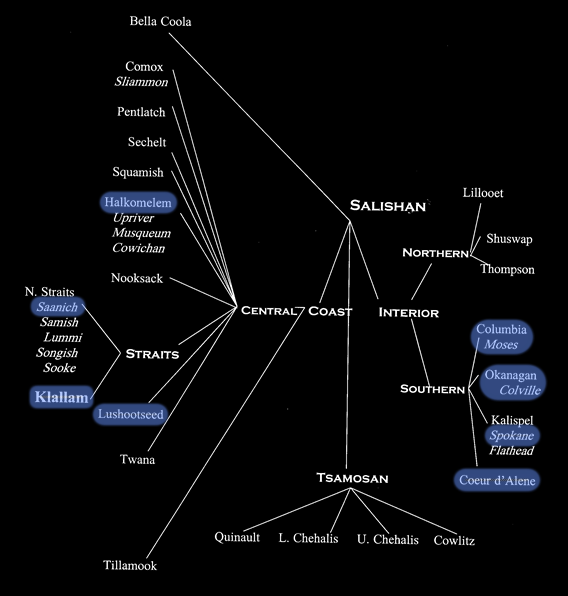 [Salish language diagram.]